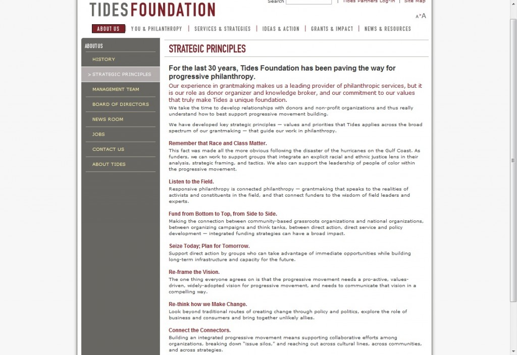 The Strategic Principles of the Tides Foundation