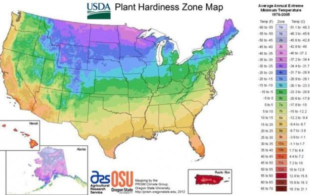 USDA-Plant-Hardiness-map-620x390