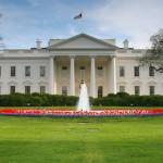 white-house7493