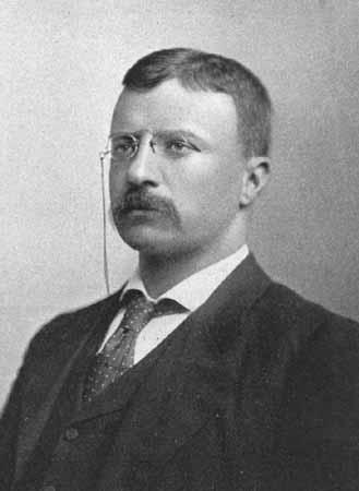 TeddyRoosevelt SC Teddy Roosevelt for President in 2012?
