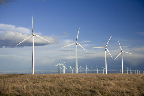 Wind Farm SC Scottish Face Choice Between Eating Or Heating Because Of Global Warming Scam