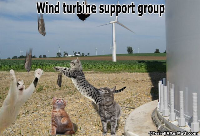 Wind Turbine Support Group SC Wind Energy: The Next Green Black Hole