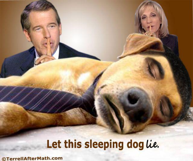Obama Media Sleeping Dog Lie SC