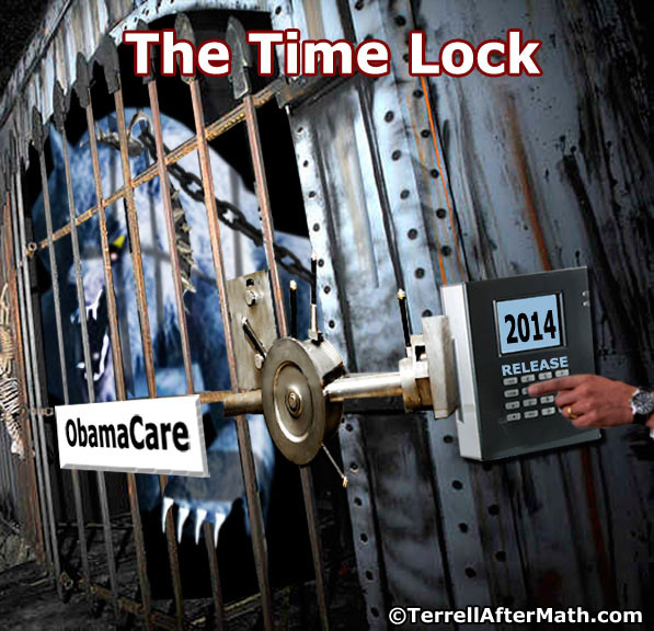 Obamacare Time Lock 2014 SC