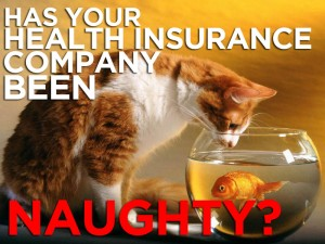 Insurance Naughty cat 300x225 ObamaCare Groupies Stunned as Insurance Companies Bail
