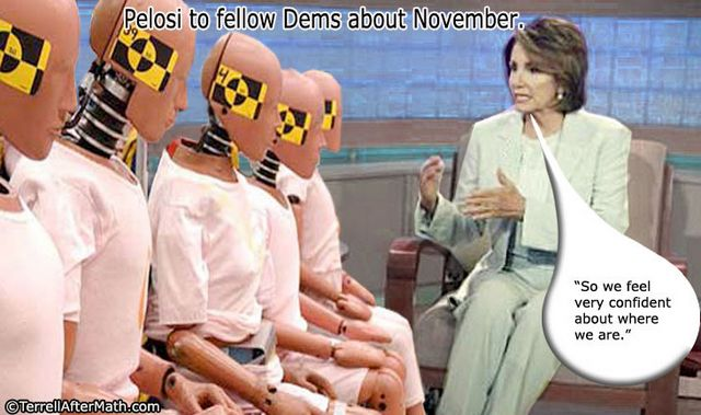 Pelosi Democrats Dummies SC