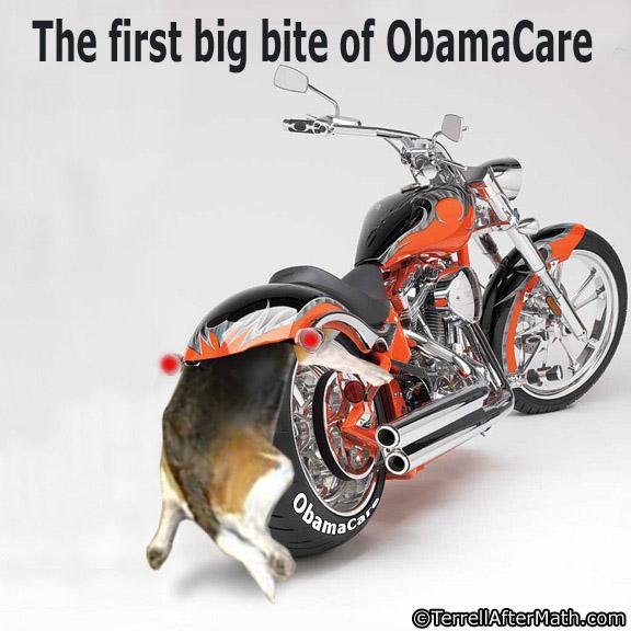 Obamacare Dog First Big Bite SC