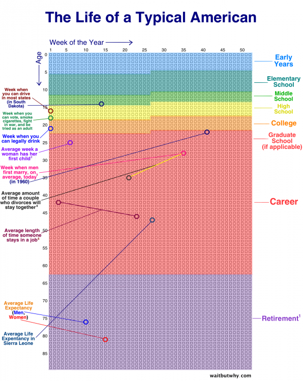 Chart Of Life Of Typical American