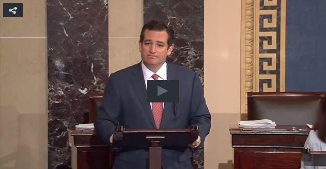 Cruz screen grab