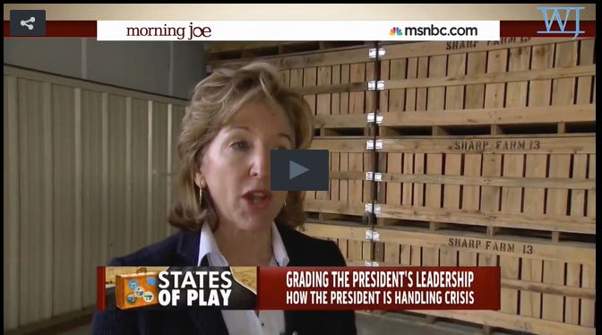 Kay Hagan Can't Say If Obama Has Been A Strong Leader