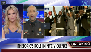 Al Sharpton Sheriff Clarke and Megyn Kelly