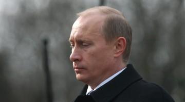 Vladimir Wrangel / Shutterstock.com  Vladimir Wrangel / Shutterstock.com