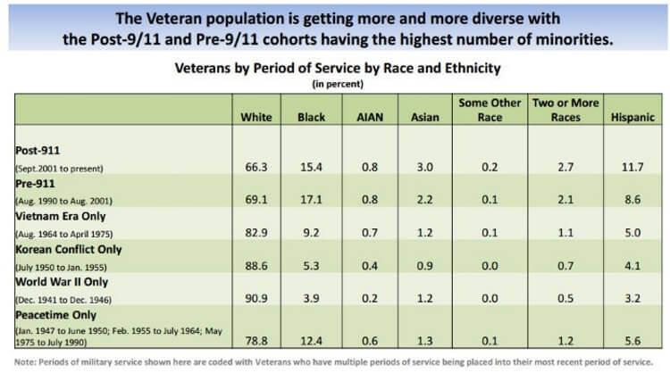 Ethnic Groups VA