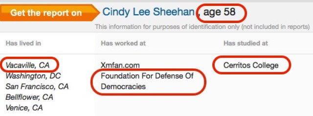 Why is the far left-wing Sheehan identified as having worked at right-wing FDD?