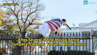 WH Fence Jumper