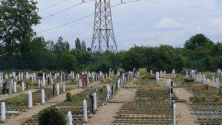 muslim burial