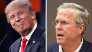 trump and jeb