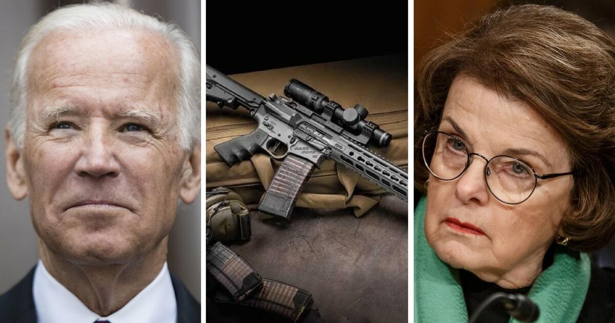 Biden, Gun, Feinstein