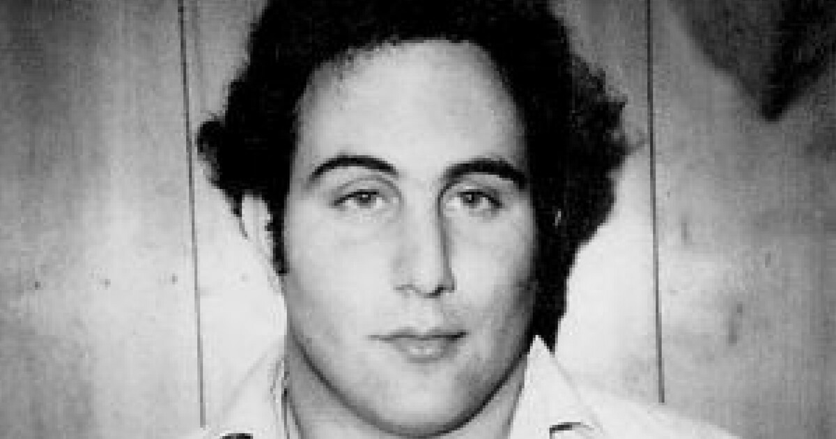 a story about david berkowitz a serial killer The religious affiliation (religion) of david berkowitz, best known as the son of sam serial killer who terrorized new york city he was from a loving jewish family.
