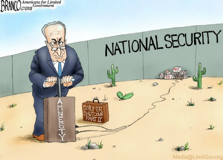 Schumer's Priorities