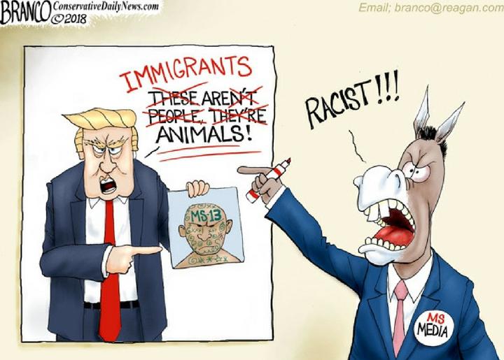 Fake Racism News