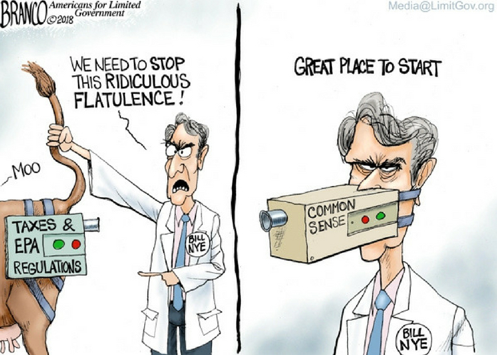 The (Not A Scientist) Science Guy
