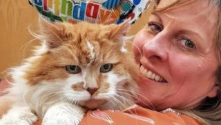 Oldest cat in the world turns 137 years old in human years