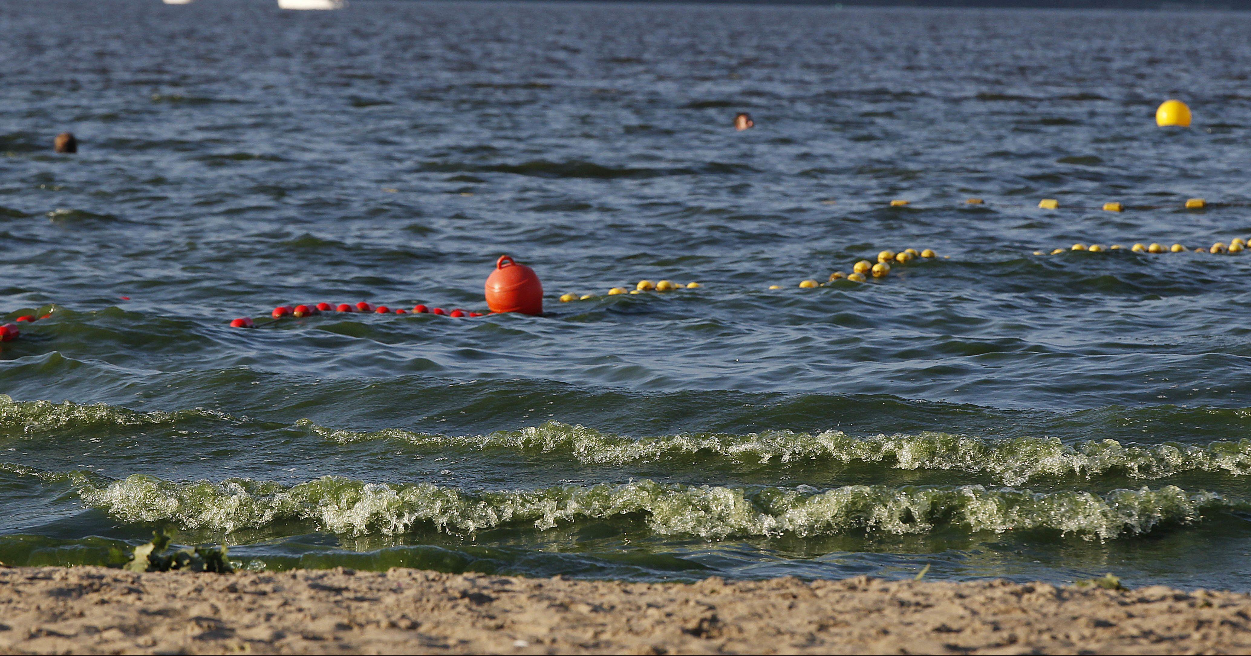 Poland Algae Blooms