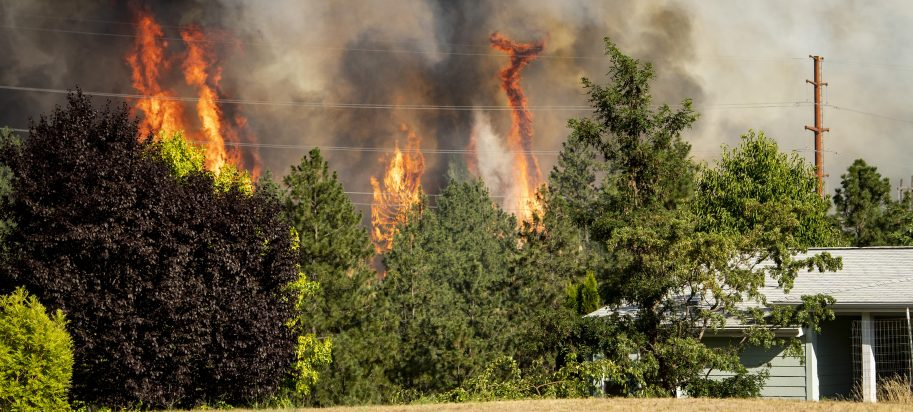Trees burn near a home Tuesday, July 17, 2018 in Spokane, Wash. Fire crews from Spokane, Spokane Valley and Fire District 9 are fighting a fast-moving wildfire just north of Upriver Drive that has engulfed several homes and prompted fire officials to call for a level three evacuation for homeowners in the area.