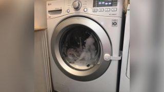 Washing Machine Child Lock