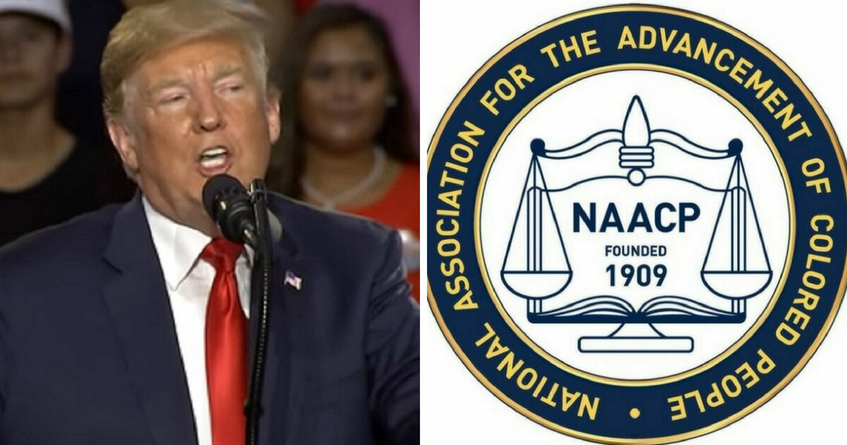 NAACP Nightmare: Own Poll Shows Trump With Huge Surge in Black Support