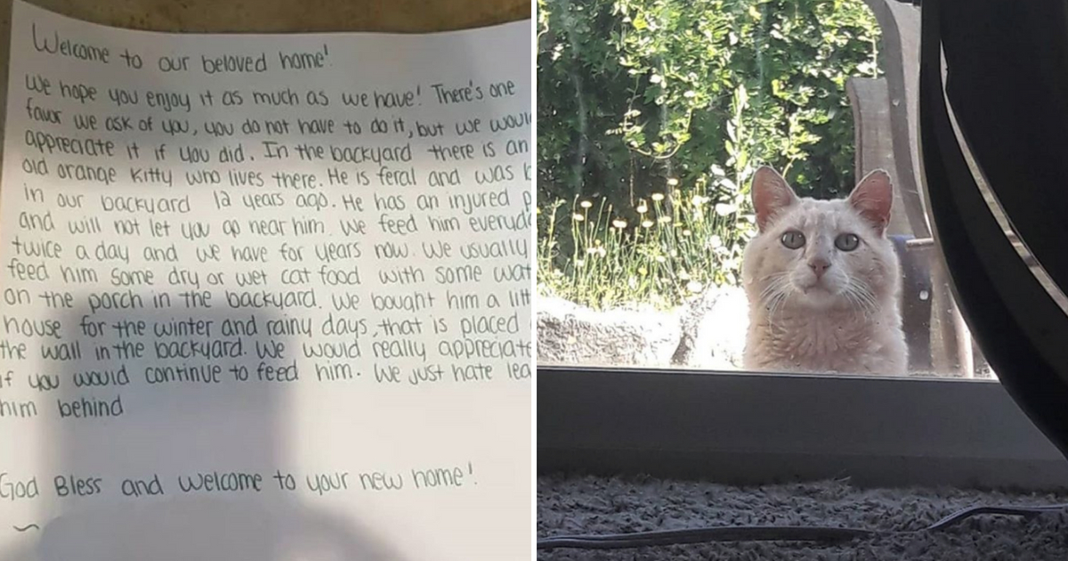 Family Finds Instructions From Old Homeowners Look Outside And See