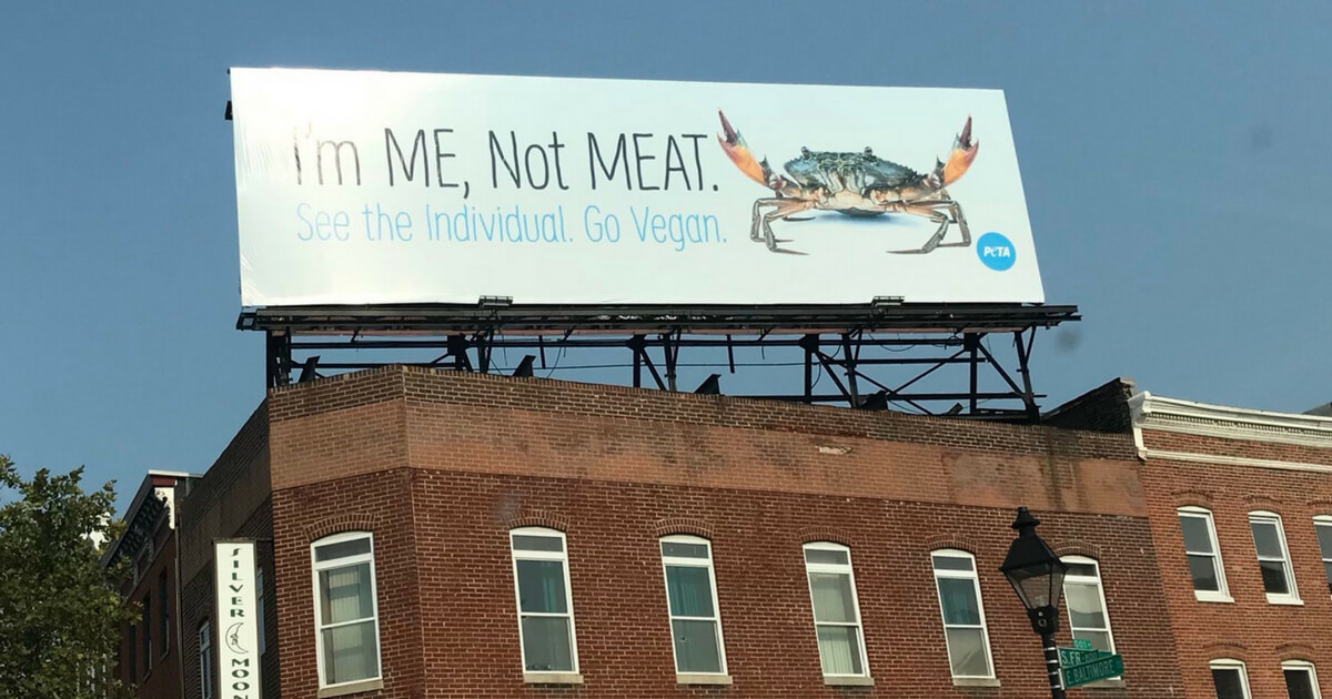 """PETA billboard in Baltimore shows crab with the words, """"I'm me, not meat."""""""