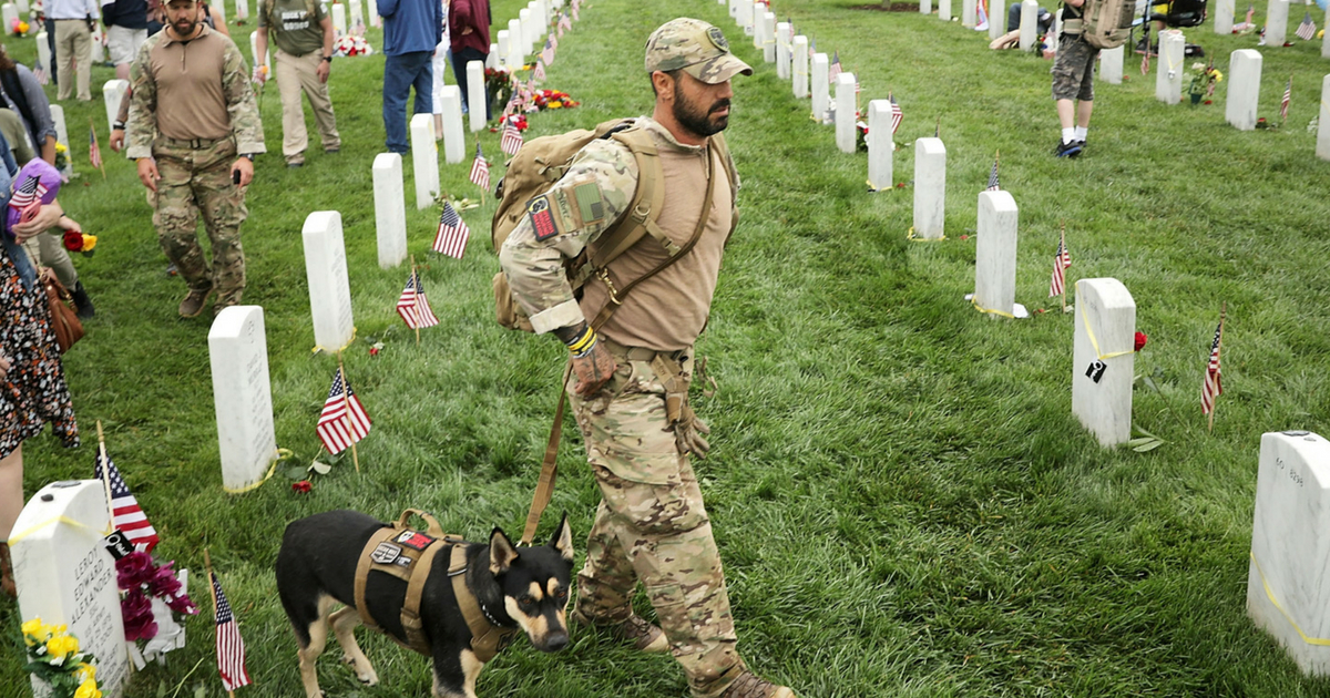 Army Veteran walking with dog through Arlington National Cemetery
