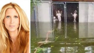 Political pundit Ann Coulter, left, had strong words about a video showing six dogs locked in a cage in the floodwaters of Hurricane Florence.