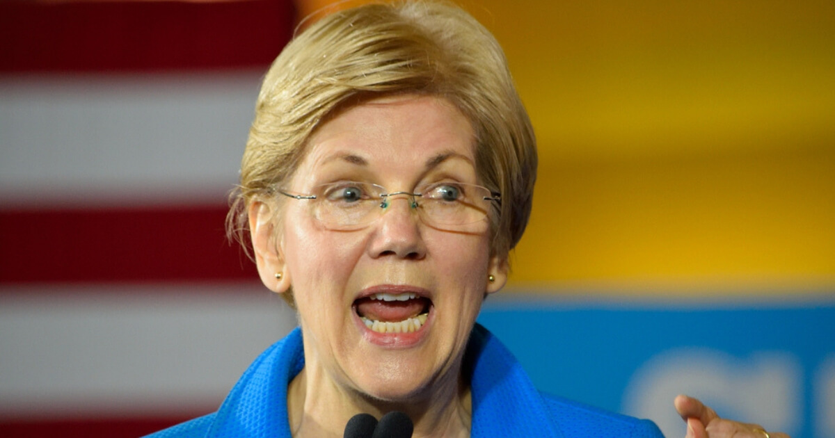 Massachusetts Sen. Elizabeth Warren appears on MSNBC