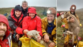 Rescue team with a sheep they rescued.