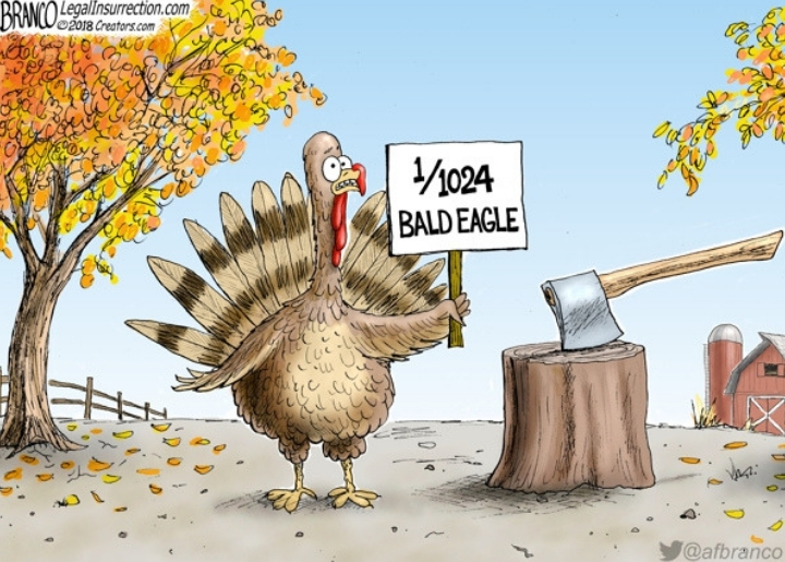 """A Thanksgiving turkey headed to the chopping block holds up a sign reading """"1/1024 bald eagle"""" in hopes of being spared."""