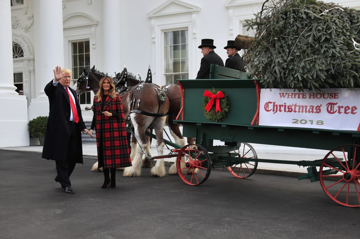 President Donald Trump and first lady Melania Trump receive the White House Christmas Tree, at the North Portico of the White House, in Washington.