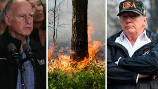 California Gov. Jerry Brown, left; forest fire, center; President Donald Trump, right.