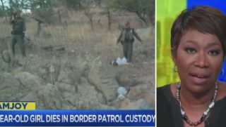 Joy Reid, right; next to Border Patrol video, left.
