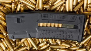 magazine and ammunition