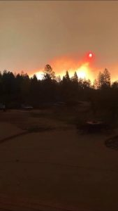 Camp Fire flames glow behind a line of trees in Paradise, California.