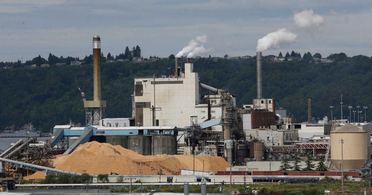 Piles of wood chips sit near the RockTenn paper mill in Tacoma, Washington.