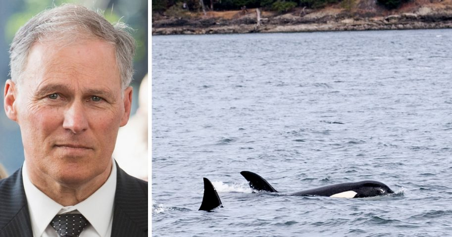 Left: Washington Gov. Jay Inslee. Right: Orcas off the state's San Juan Islands.