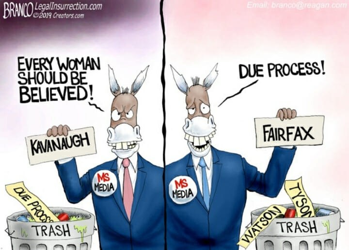 Democrat donkey holding up signs that read 'Kavanaugh' and 'Fairfax'