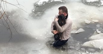 Man wades through icy water to rescue pup.