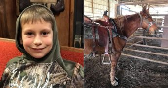 Little boy, left, and horse, right.