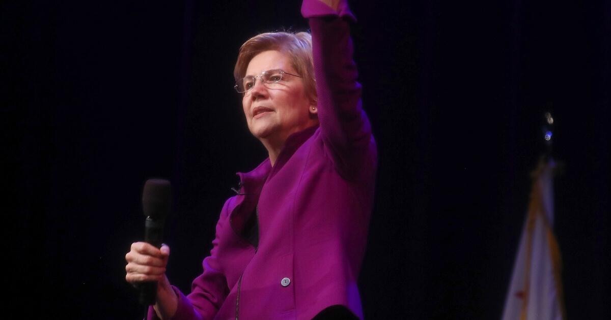 Sen. and Democratic presidential candidate Elizabeth Warren speaks at an organizing event on Feb. 18, 2019 in Glendale, California.