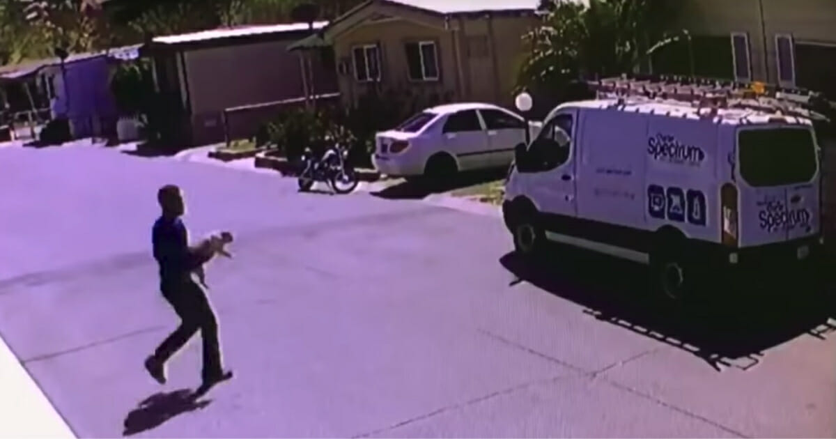 Cable guy steals dog